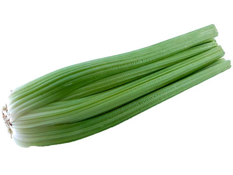 Celer Rebraš