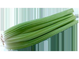 Celer Naslovna